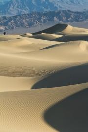 131125_Mesquite-Dunes