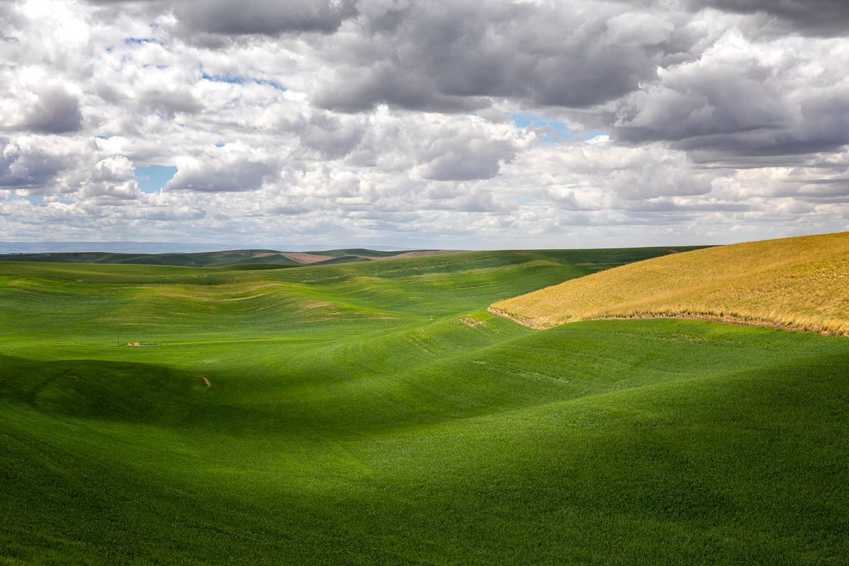 Rolling-Hills-and-Shadows