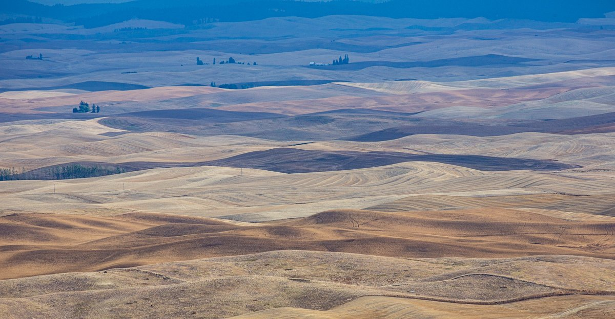 Steptoe-View-Rolling-Brown-Blue-Hills