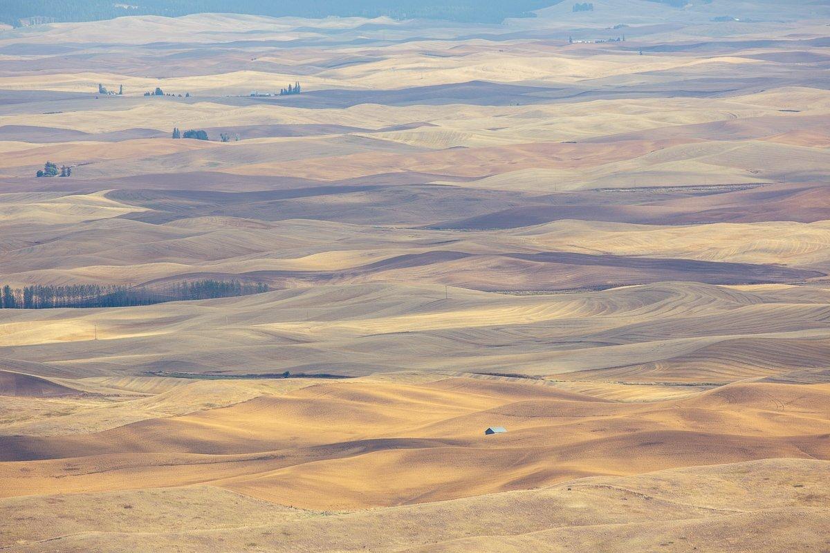 Steptoe-View-Rolling-Hills-Pastels
