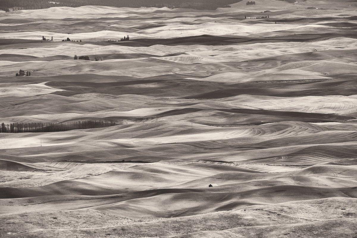 Steptoe-View-Rolling-Hills-Sepia