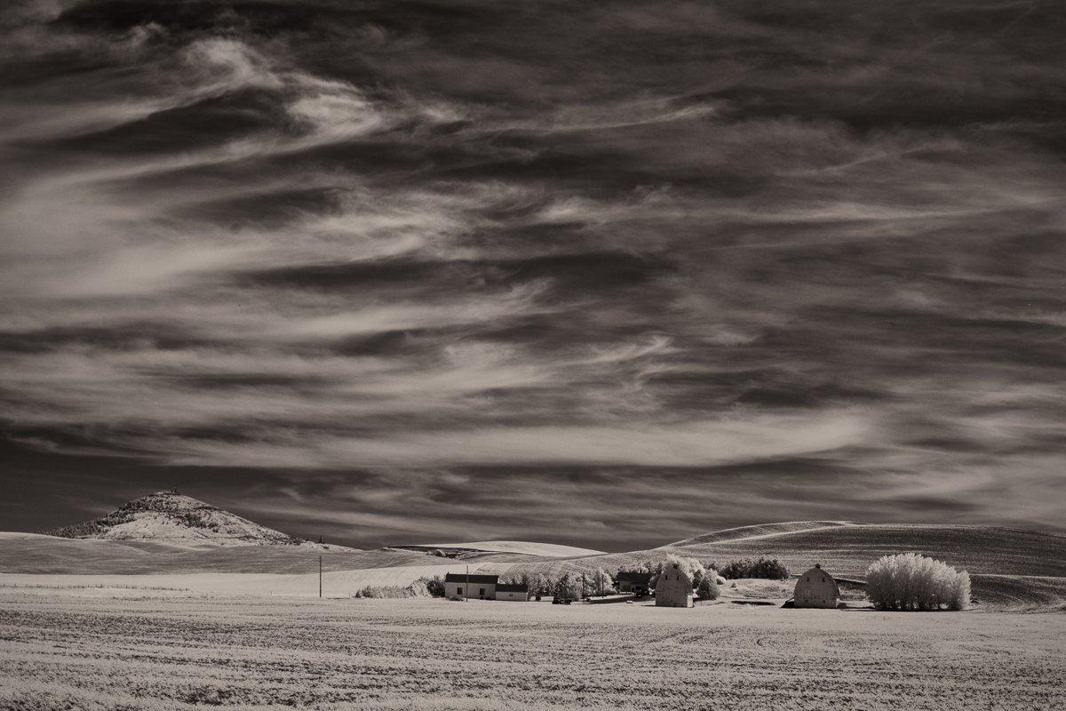Two-White-Barns-and-Palouse-Sky