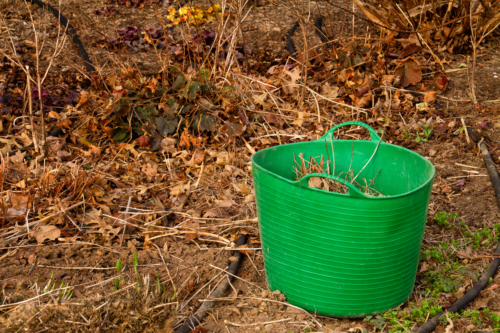 1304125_Spring_GreenBucket by Karl G. Graf.