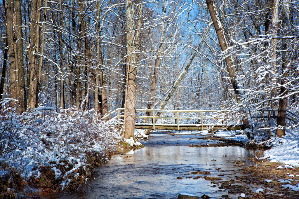 131224_PV_Bridge in the Woods by © 2013 Karl Graf.