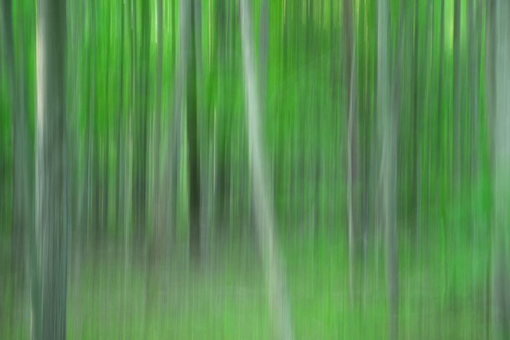 140531_PV Park Vert Pan by 2013 Karl Graf.